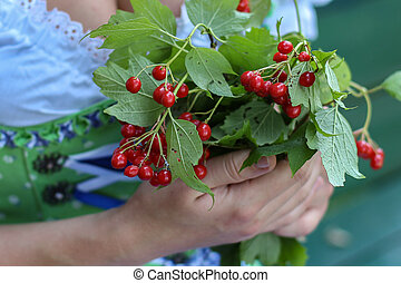 Red berries in the hands of the girl