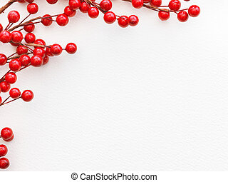 Red  Berries on paper