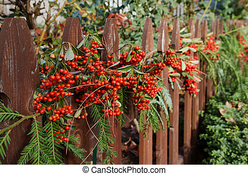 red berry decorated fence