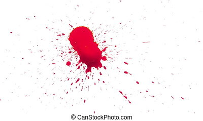 Red Blood Spread on White Background