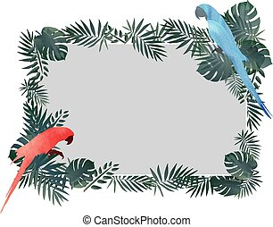 Red / Blue Macaw bird and tropical green leaf frame pattern background