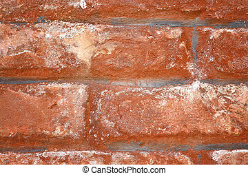 Red Brick in Old Wall