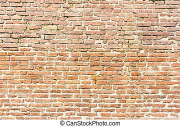 Red brick wall and cement