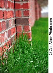 Red Brick Wall and Green Grass