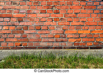 Red brick wall background with green grass.