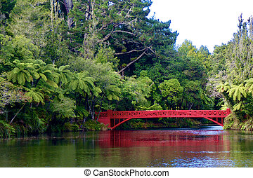 Lake with a red bridge in bush land park
