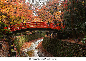 Red bridge in a Japanese garden with red maples during Fall season