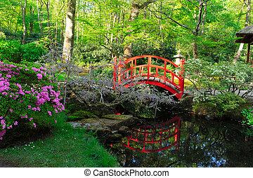 japanese garden in The Hague