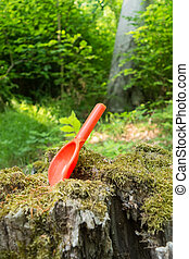 red bucket on a tree stump