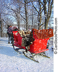 Red Buggy - Buggy under the snow
