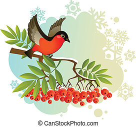 Red bullfinch on winter background