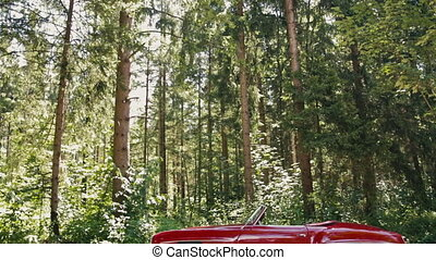 Red cabriolet old-timer in the forest - Side view of a red ...