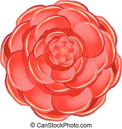 Red camellia icon, cartoon style