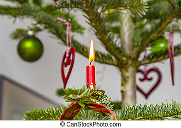 red candle with flame at the natural christmas tree