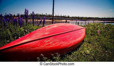 red canoe on shore