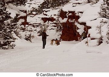 Red Canyon in the Snow II