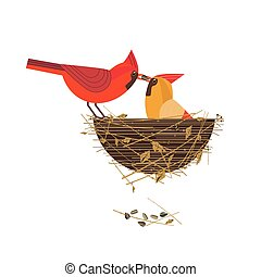 Red cardinal birds couple - Cute Red Northern cardinal birds...