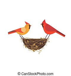 Red cardinal birds couple - Cute Red Northern cardinal ...