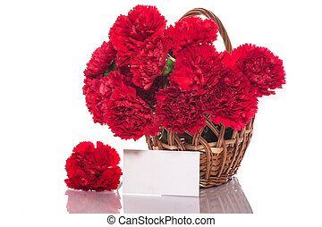 red carnation - bouquet of red roses on a white background