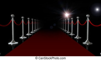 Red Carpet  - Camera moves through red carpet.