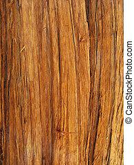 red cedar bark