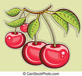 Red cherries .Vector fruits isolated for design