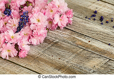Red cherry blossom with two grape hyacinth on wood texture
