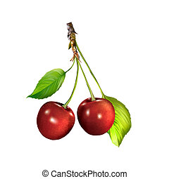 Red Cherry isolated on white background, Cherries hanging on...