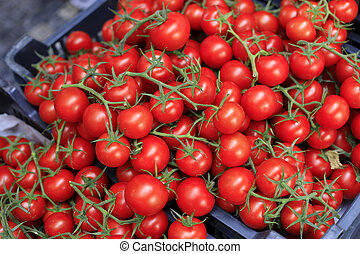 Red cherry tomatoes at the market