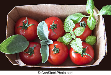 Red cherry tomatoes in a cardboard box with aromatic herbs