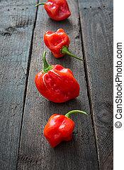 Red Chili pepper Habanero