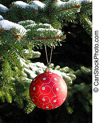 Red Christmas ball on fir tree - Red Christmas ball on snow...