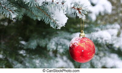 Red Christmas Ball on the Fir Branch Covered with Snow. Christmas Background.