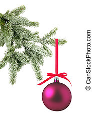 Red christmas ball on the tree isolated on white background