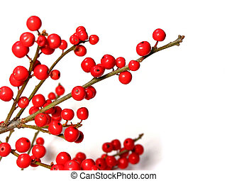 Red christmas berries - Berry tree christmas decoration on...