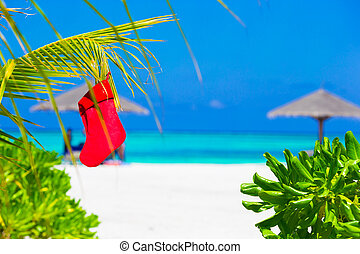 Red Christmas stocking on palm tree at tropical beach