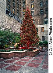 Red City Tree