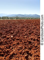 Red clay soil texture on a sunny morning