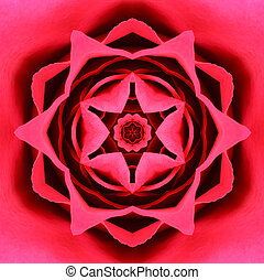 Red Concentric Flower Center. Mandala Kaleidoscopic design...