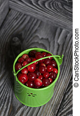 Red cranberries in a miniature green bucket. Stands on brushed boards.
