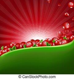 Red Cranberry Border With Sunburst