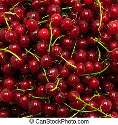 red currant background