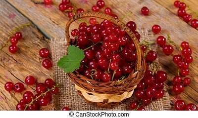 Red currant berries in basket rotating on wooden table