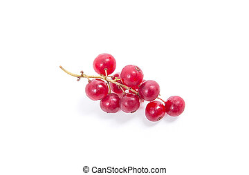 Red currant berry isolated on white. A bunch of red currant.