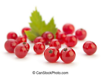 Red currant berry