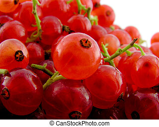 Red currant. A close up.