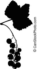 Red currant silhouette icon - Vector illustrations of...