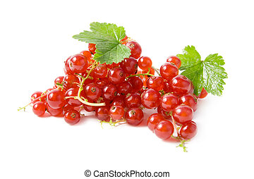 Red currant with green leaves.