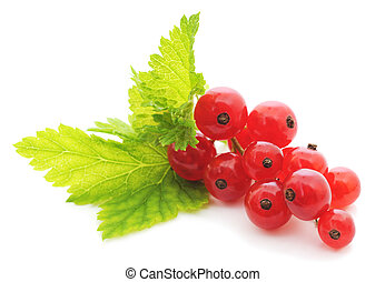 close up of red currants on white