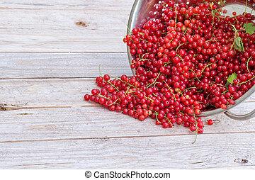 Red currants in metal colander